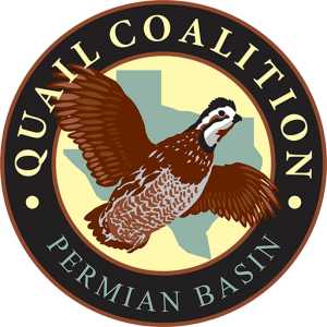 Permian Basin Quail Coalition Chapter